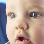 dental insurance 150